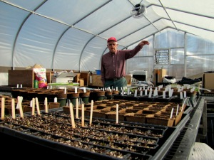 Hamilton_Food_Greenhouse_2