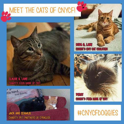 cats 2015